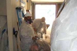 EE&G mold, Panama City, mold and asbestos consulting, MOLD INSPECTION, Asbestos Consulting